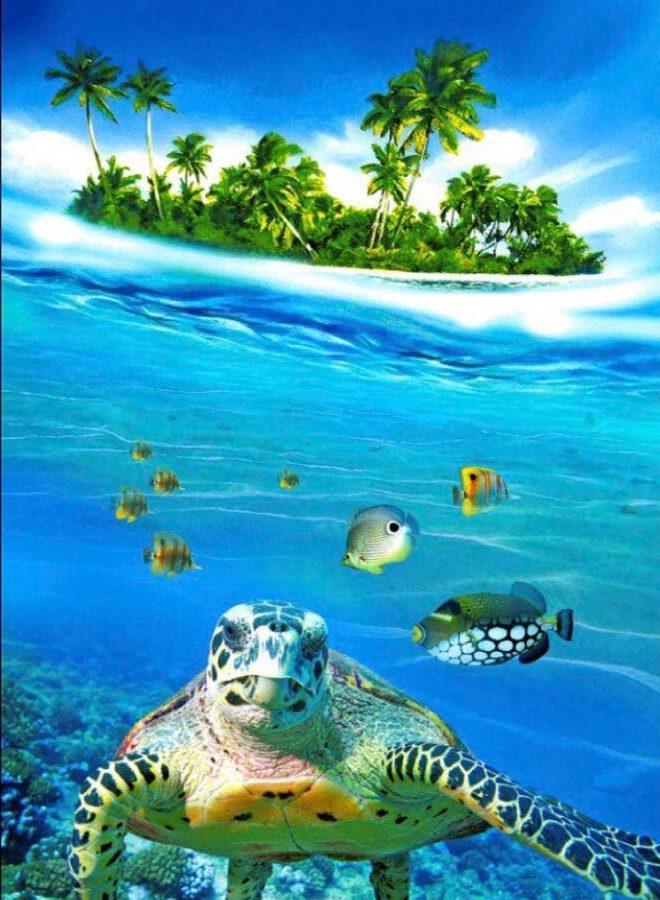 Полотенце вафельное пляжное 80х150 80150П Черепаха